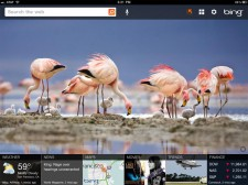 Bing-for-iPad-1-225x168