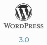 wordpress301